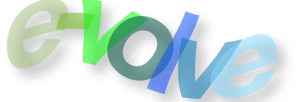 e-volve Information Technology Services, LLC